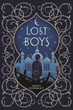 Bookjacket for  Lost Boys