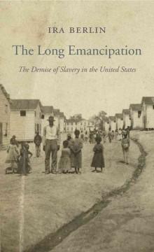 The long emancipation : the demise of slavery in the United States