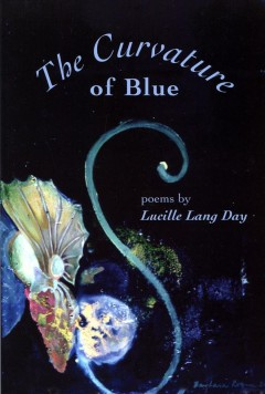 Book cover of The Curvature of Blue by Lucille Lang Day