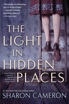 The-Light-in-Hidden-Places-[electronic-resource]-:-Cameron,-Sharon.