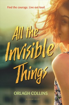 All-the-invisible-things-/-Orlagh-Collins.