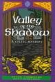 Saint Brigid's bones : a Celtic adventure.