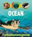 Ocean : a peek-through picture book.