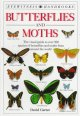 MOTHS THAT THINK THEY'RE BUTTERFLIES.
