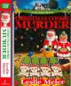 A merry little murder : a Lindy Haggerty mystery.