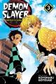 Demon slayer = Kimetsu no yaiba.