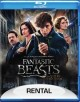Fantastic beasts and where to find them. [DVD]