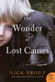 The wonder of lost causes : a novel.