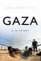 Hamas and civil society in Gaza : engaging the Islamist social sector.