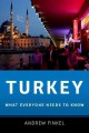 Turkey. [electronic resource] : conditions, issues and U.S. relations.