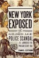 The ambivalent state. [electronic resource] : police-criminal collusion at the urban margins.