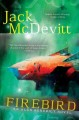 Lady of magick : a Noctis Magicæ novel.
