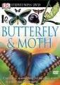 Luna moths : masters of change.