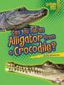 A crocodile's life.