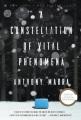 A constellation of vital phenomena. [electronic resource] : a novel.