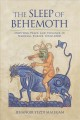 Defiant priests. [electronic resource] : domestic unions, violence, and clerical masculinity in fourteenth-century Catalunya.