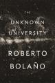Roberto Bolaño's fiction : an expanding universe.