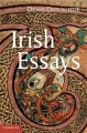 Literacy and identity in early medieval Ireland. [electronic resource]