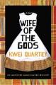 Wife of the gods. [electronic resource] : Darko Dawson Series, Book 1.