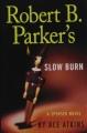 Robert B. Parker's Little white lies.
