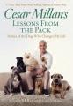 Lecciones de la manada : historias de los perros que cambiaron mi vida.