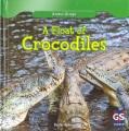 Beware of the crocodile.