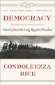 Democracy. [electronic resource]: Problems and Perspectives.