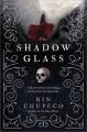 Song of the dead : a reign of the fallen novel.