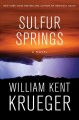 Sulfur Springs. a novel.