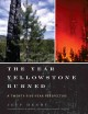 Firestorm : how wildfire will shape our future.