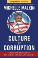 Profiles in Corruption. [electronic resource]