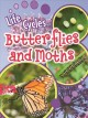 Butterfly or moth? : how do you know?