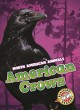The World of Dinosaurs Series. Bellwether/Epic. Gr. 2-4.