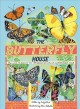 Butterflies in room 6 : see how they grow.
