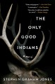 The only good Indians : a novel.