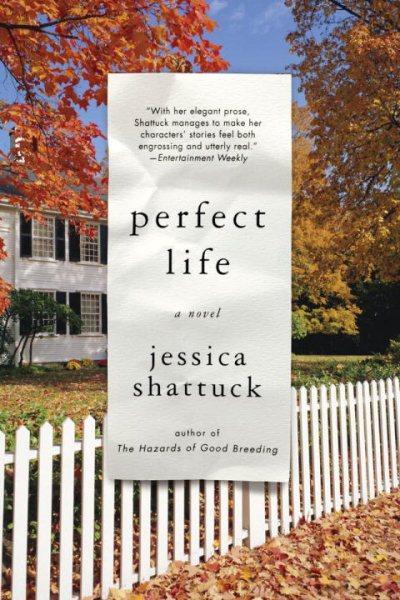 Perfect life : a novel