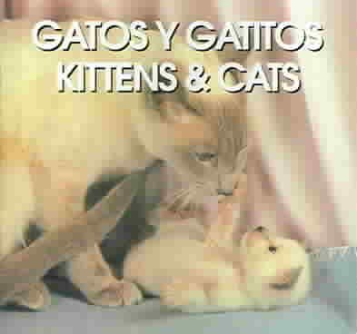 Gatos Y Gatitos/Kittens & Cats