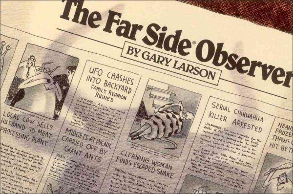 Far Side Observer