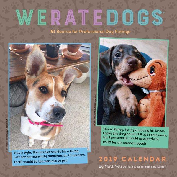 Weratedogs 2019 Calendar