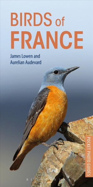 Birds of France