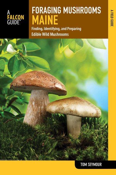 Foraging Mushrooms Maine