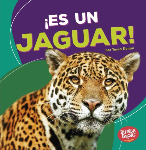 Es un jaguar / It's a Jaguar