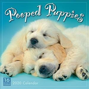 Pooped Puppies 2020 Calendar(Wall)