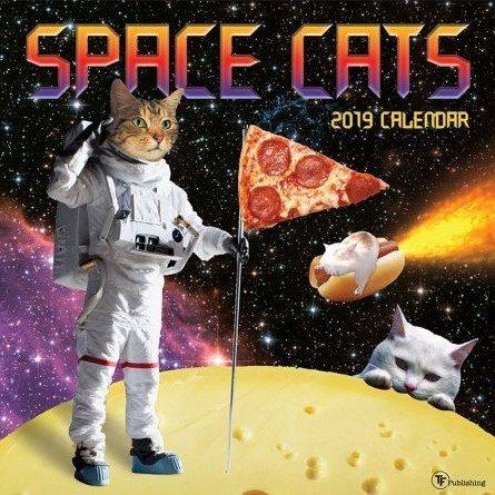 Space Cats 2019 Calendar(Wall)