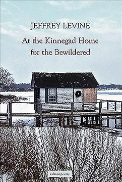 The Kinnegad Home for the Bewildered